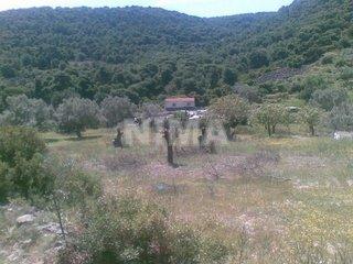 for sale Land (province) Egina Islands